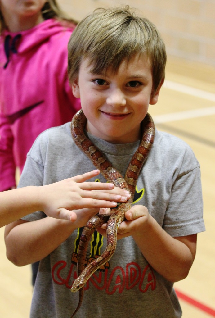 Boy with cornsnake